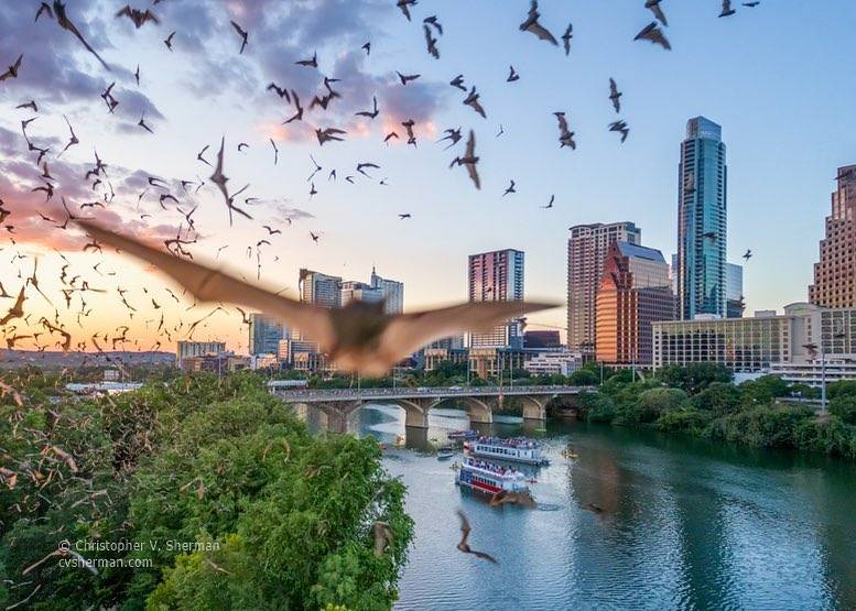 Austin is a top 20 summer vacation in usa